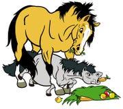 Tecknad filmhäst och ponny Royaltyfri Bild