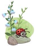 Tecknad filmhörndesign med nyckelpigan och blommor stock illustrationer