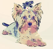 tecknad filmhund Royaltyfri Foto