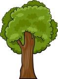 Tecknad filmillustration av det lövfällande trädet Arkivfoton