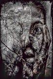 Tecknad filmillustration av spökekvinnan med reflexion av träd i vatten, mardrömbegrepp royaltyfri illustrationer