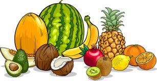 Tecknad filmillustration för tropiska frukter Fotografering för Bildbyråer