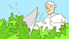 Tecknad filmkocken i kockhatt klipper en ny salladgrönsallat med en kniv, nedersta sikt Fotografering för Bildbyråer