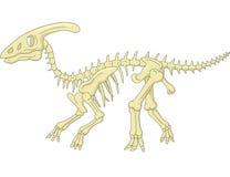 Tecknad filmParasaurolophus skelett Arkivbild