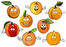 Tecknad filmpersikor, nektariner och aprikosfrukter Fotografering för Bildbyråer