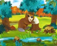 Tecknad filmplats - lösa Amerika djur - bäver Fotografering för Bildbyråer