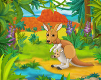 Tecknad filmplats - lösa Amerika djur - karikatyr - känguru Arkivfoto