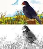Tecknad filmsagaplats - färgläggningsida - illustration för barnen Arkivbilder