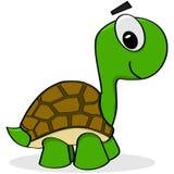 Tecknad filmsköldpadda Fotografering för Bildbyråer