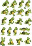Tecknad filmsköldpadda Royaltyfri Bild