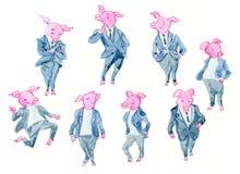 Tecknad filmsvin som kontorsarbetare royaltyfri illustrationer