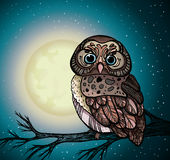 Tecknad filmuggla och fullmåne. Fotografering för Bildbyråer