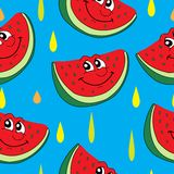 Tecknad filmvattenmelon och droppmodell Arkivbild