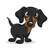 Tecknad filmvektorillustration av den gulliga fullblods- taxhunden royaltyfri illustrationer