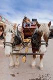 tecknad hästvagn Arkivfoto