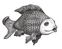 tecknande fisk Fotografering för Bildbyråer