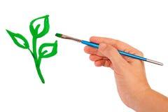 tecknar den gröna handgrodden royaltyfria bilder