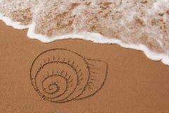 tecknat sandskal arkivfoton