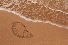 tecknat sandskal arkivbilder