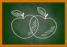 Teckning av äpplen Arkivfoto