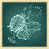 Teckning av den abstrakta blåklockablomman Royaltyfria Bilder