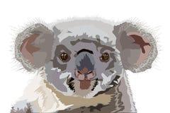 Teckning av den australiska koalan vektor illustrationer