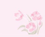 Teckning av den härliga tulpanblomman stock illustrationer
