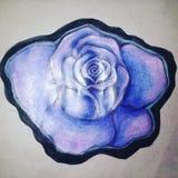 Teckning av en ros arkivfoto