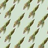 Teckning av havre vid vattenfärgen Royaltyfri Foto