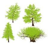 Teckning av trädvektorn royaltyfri illustrationer