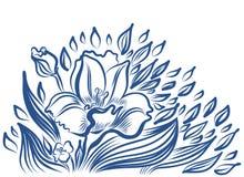 Teckning för pingstliljavårblomma Royaltyfri Foto
