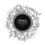 Teckning för ram för blommatappningvektor Pion, ros, sidor och ber Royaltyfri Fotografi
