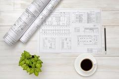 Teckningen skissar, koppen kaffe, och houseplanten är på träyttersida Royaltyfria Foton
