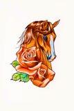 Teckningshuvud av hästen Arkivbilder