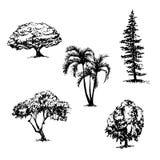 Teckningssamlingen av 5 träd skissar illustrationen vektor illustrationer