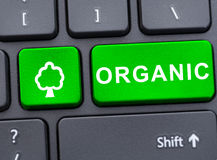 Teclado de ordenador con el botón orgánico verde Imagen de archivo libre de regalías