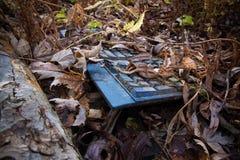 Teclado olvidado largo abandonado en el bosque Imágenes de archivo libres de regalías