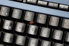 Teclado y ladybug fotografía de archivo libre de regalías