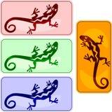 Teclas com iguanas Imagens de Stock Royalty Free