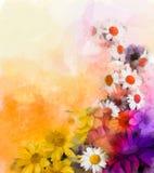 Tecniche dell'acquerello della miscela dei fiori della pittura a olio nel fondo Immagini Stock Libere da Diritti