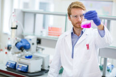 Tecnico chimico che controlla reagente liquido fotografie stock libere da diritti