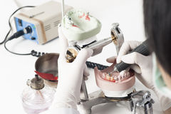 Tecnico dentale che lavora con il articulator fotografia stock