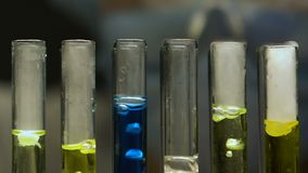 Tecnico di laboratorio che aggiunge liquido nelle provette, confrontanti reazione d'ebollizione, produzione stock footage