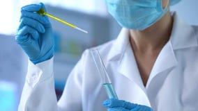 Tecnico di laboratorio che gocciola liquido giallo in provetta, controllo di qualità dell'olio, esperimento immagine stock libera da diritti