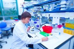 Tecnico nel laboratorio di microbiologia Fotografie Stock