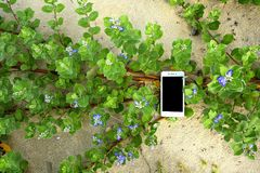 Tecnología con la naturaleza Fotos de archivo