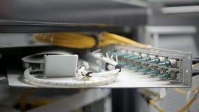 Tecnología de comunicación de la fibra óptica almacen de metraje de vídeo