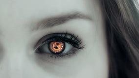 Tecnología del ojo almacen de video