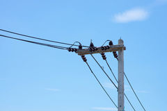 tecnología: posts eléctricos por el camino Imagen de archivo libre de regalías