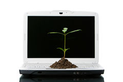 Tecnología verde imágenes de archivo libres de regalías